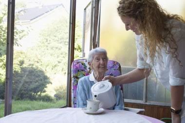 elderly home help